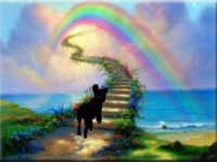 regenbogenbruecke-jpg
